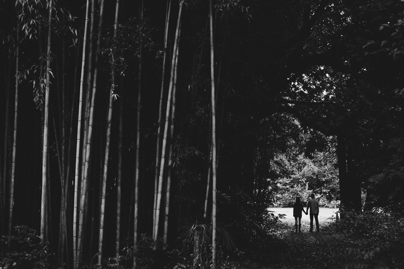 Couple standing in bamboo Grove