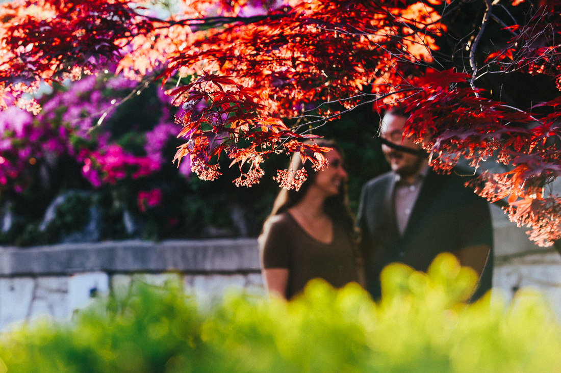 Tokyo engagement portrait of Japanese maple with couple