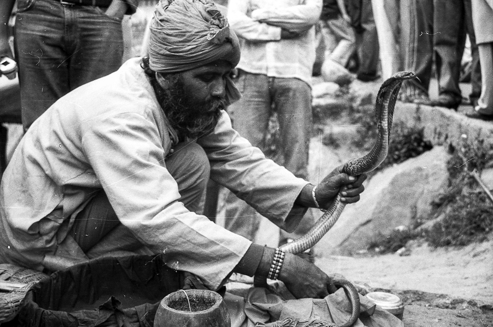 Cobra handler in India black and white